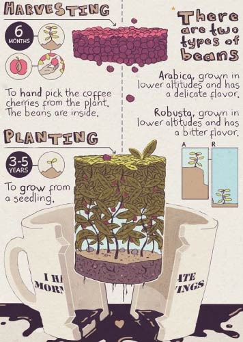 Turner National Coffee Day Infographic 5605