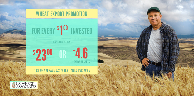 US Wheat Associates Infographics 287