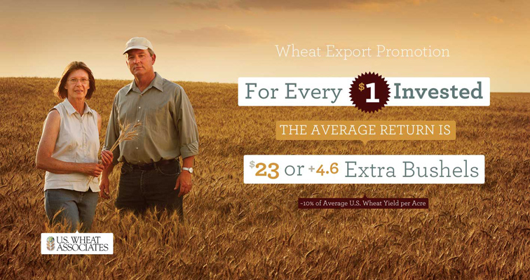 US Wheat Associates Infographics 288