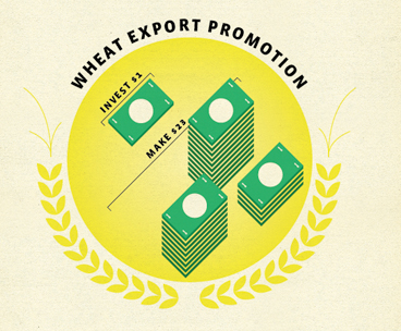 US Wheat Associates Infographics 412