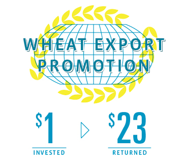 US Wheat Associates Infographics 415
